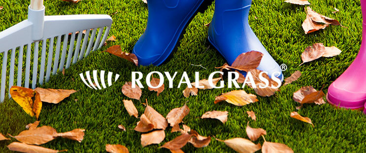 artificial grass maintenance