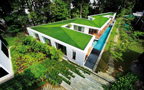 artificial turf for a green roof garden