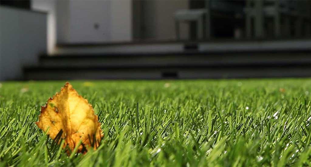 Maintenance artificial grass