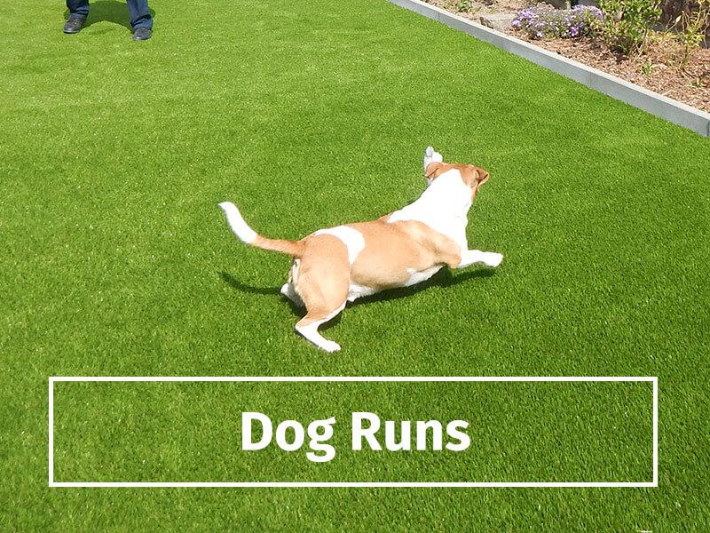 dog-runs