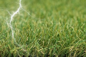is-artificial-grass-static